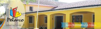 Sitio Web Municipalidad de Pelarco.