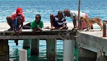 Caribbean 2010-2011