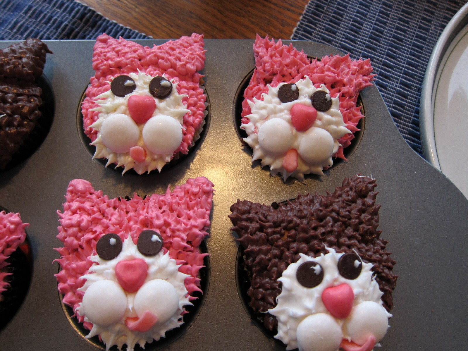 Meet the kitties! We decided to alternate between pink and brown fur ...
