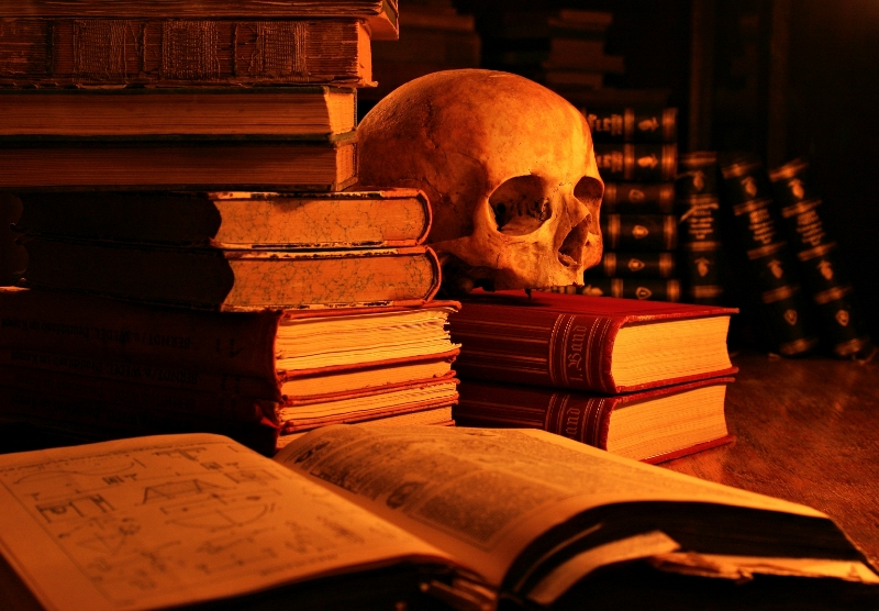 Šarl Bodler - Page 5 Skull-and-books