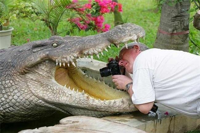 Fotógrafos em ação em busca da melhor imagem