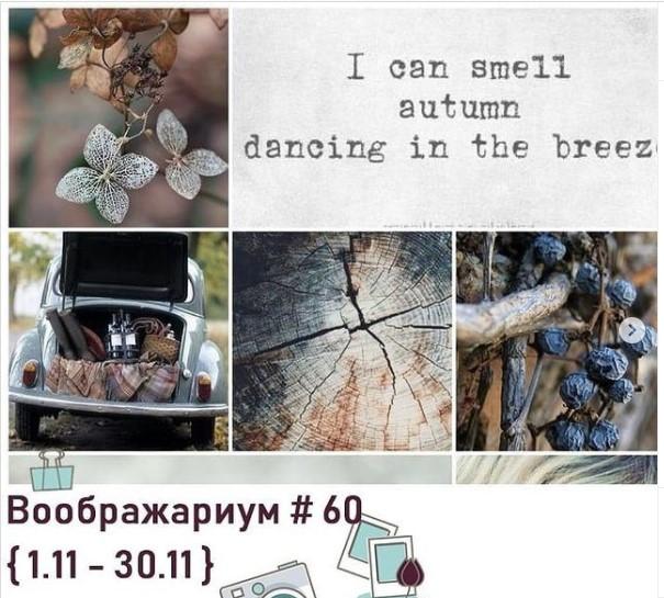 Воображариум60 30/11