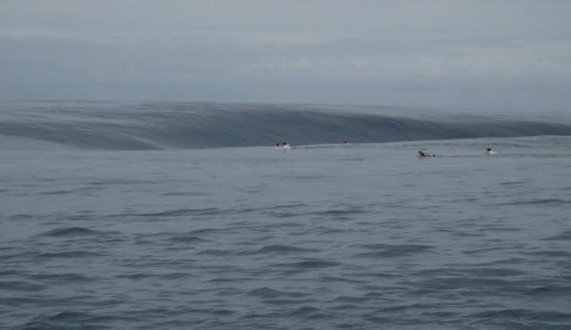 photo de surf 8903