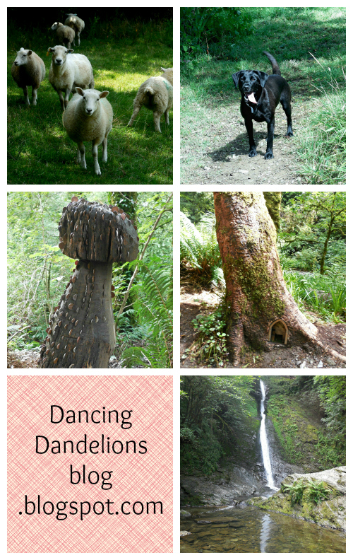 My summer holiday diary part 2 - Dartmoor