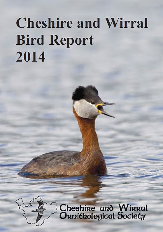 LATEST BIRD REPORT