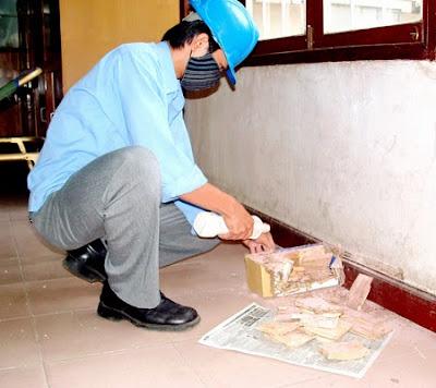 Phun thuoc diet lay truyen PMC 90