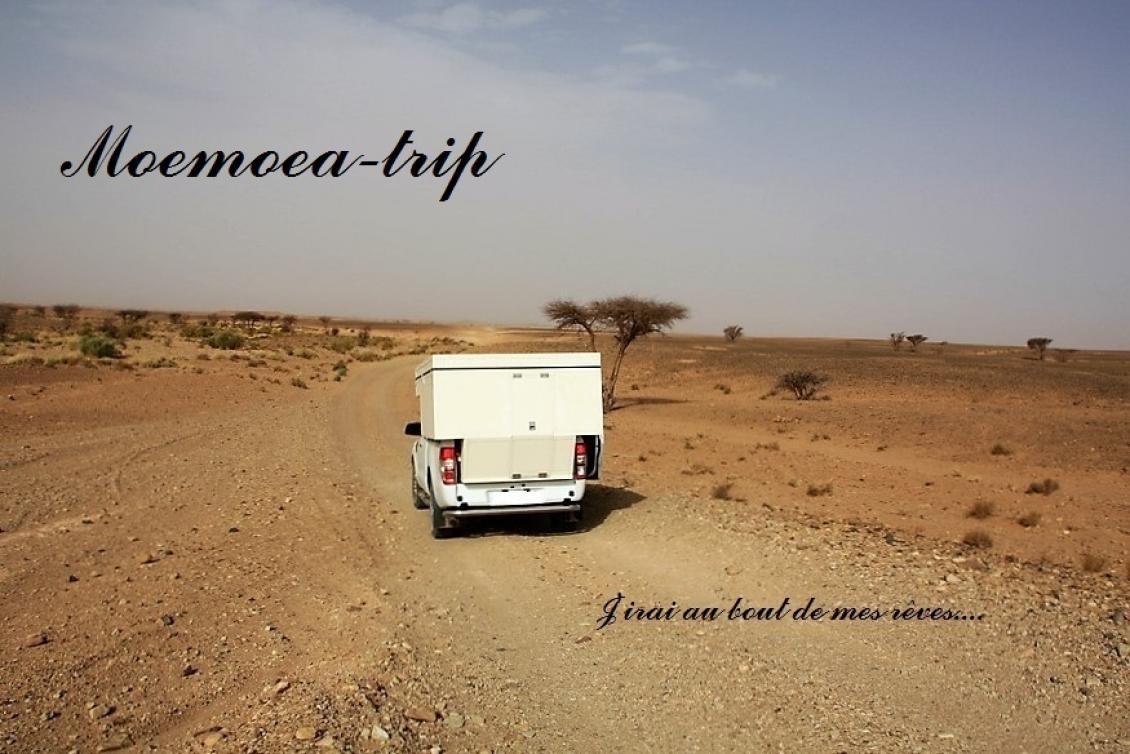 Moemoea-trip