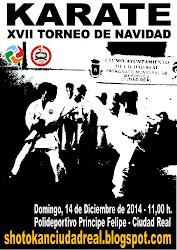 Torneo de Navidad 2014