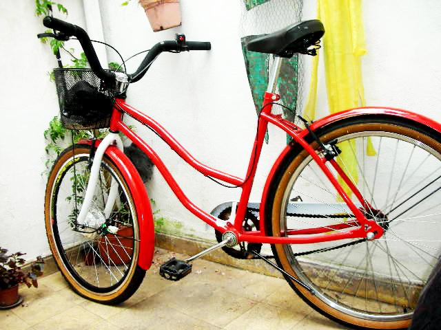 Presenta tu bici eléctrica - Página 2 DSCN7842