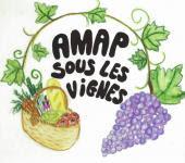 amap sous les vignes