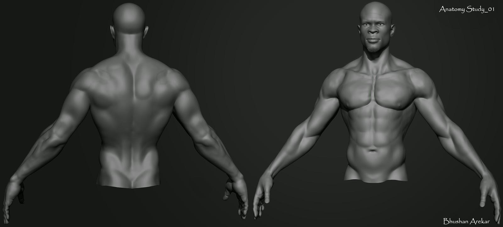 Anatomy+Study_01a.jpg
