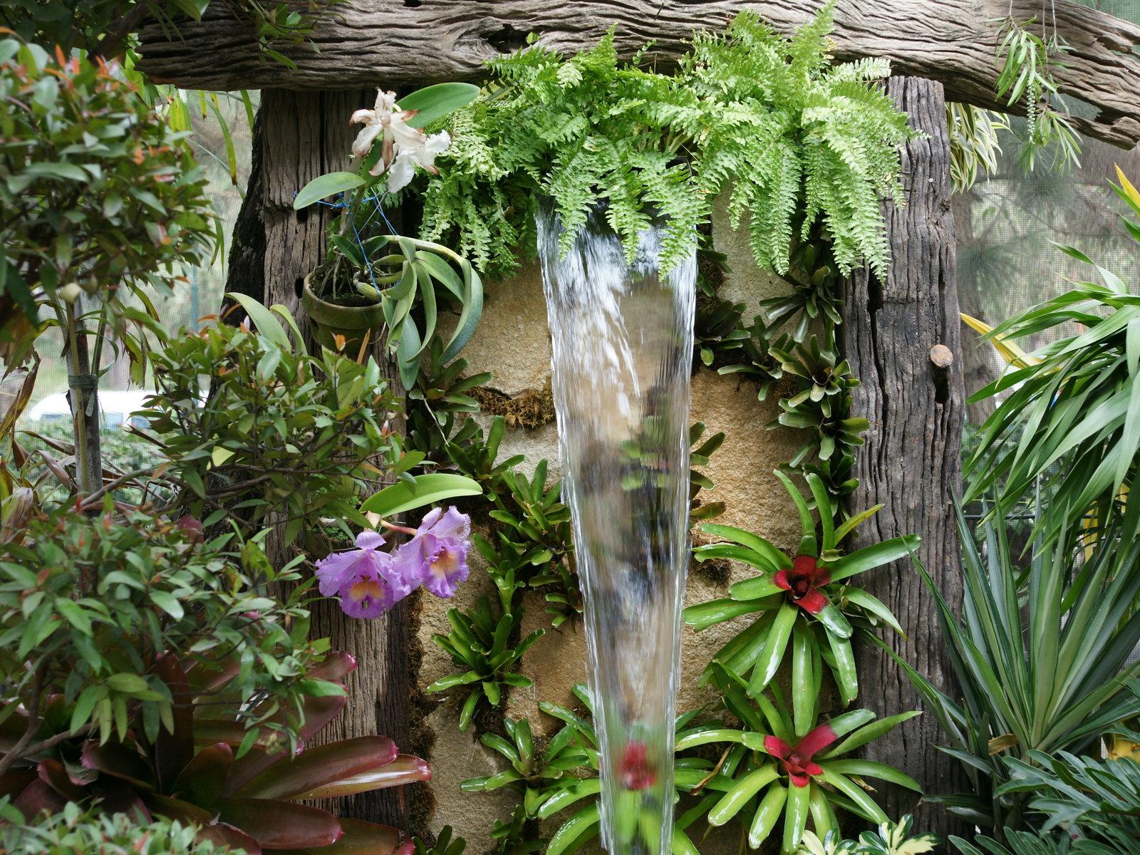 Foto Foto Kebun Bunga Yang Indah Wallpaper
