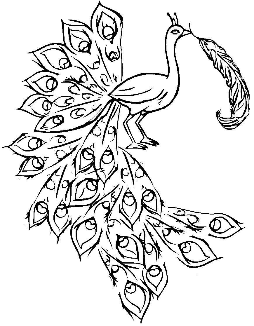 Free Coloring Pages Of Peacock Painting
