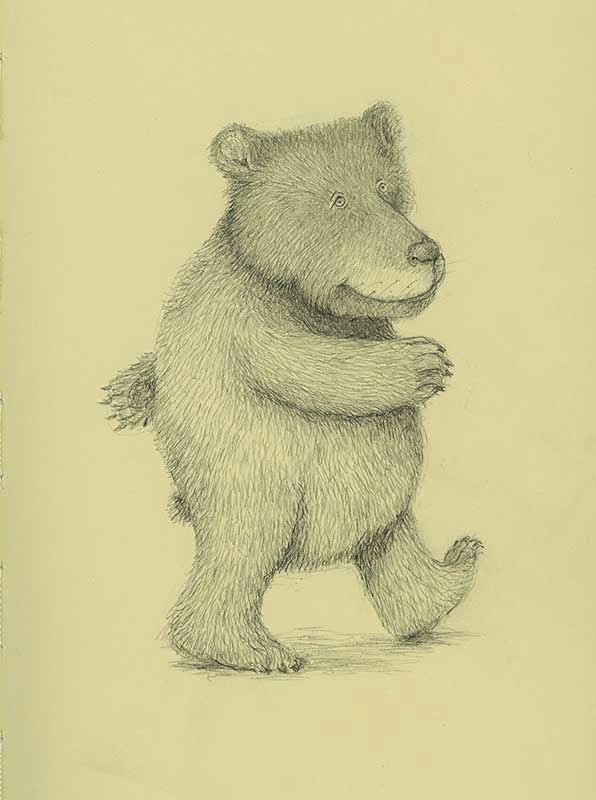 bear - yara dutra