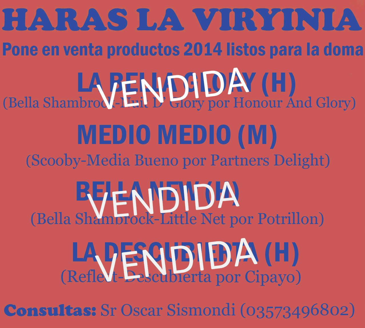 HS LA VIRYINIA PRODUCTOS