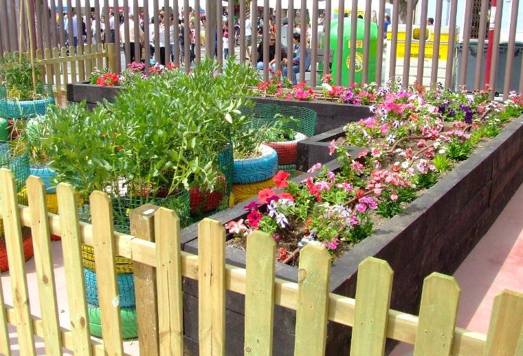 Acho si o que crear un huerto escolar for Asociacion de plantas en el huerto