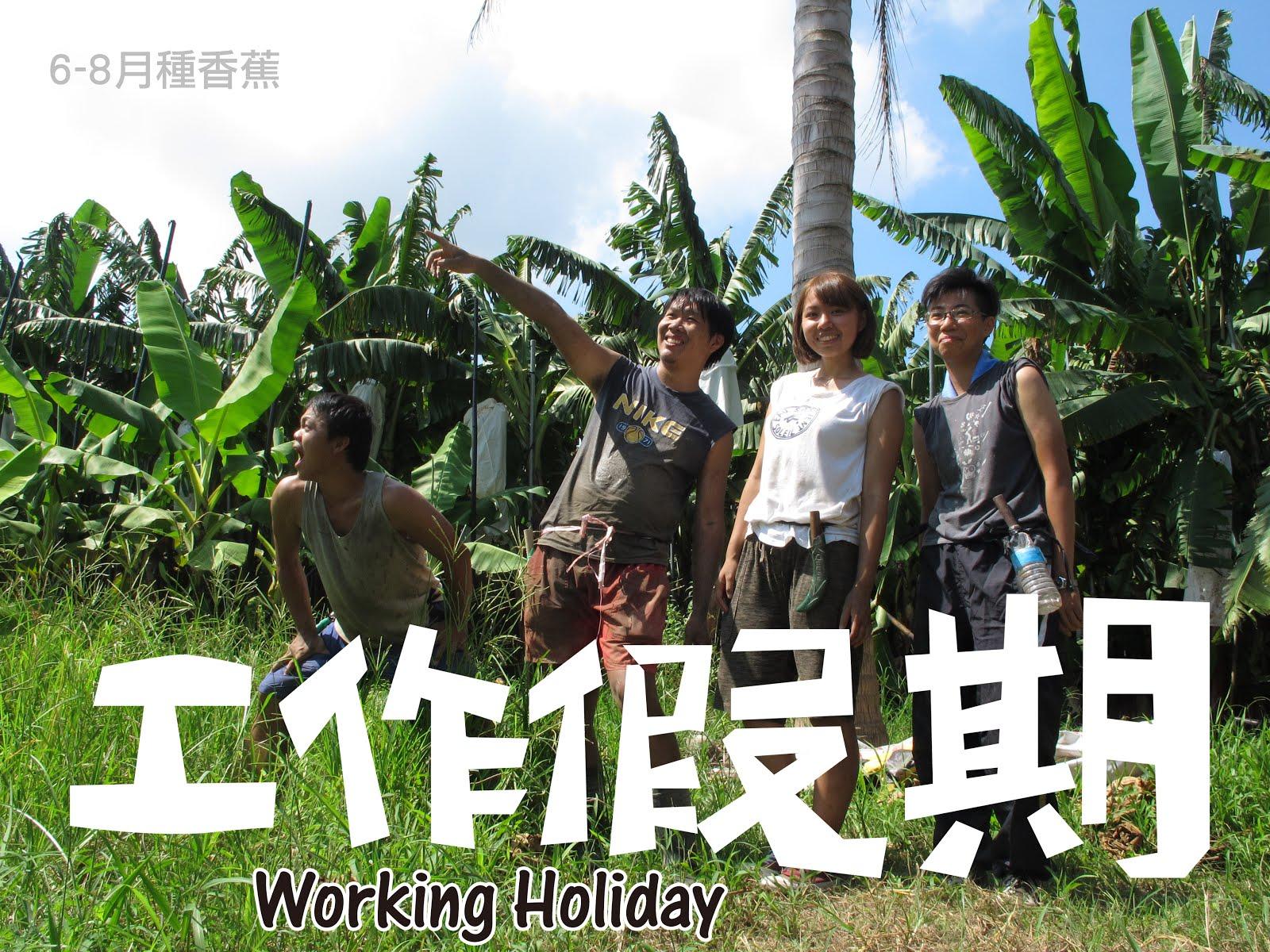 蕉農體驗工作假期