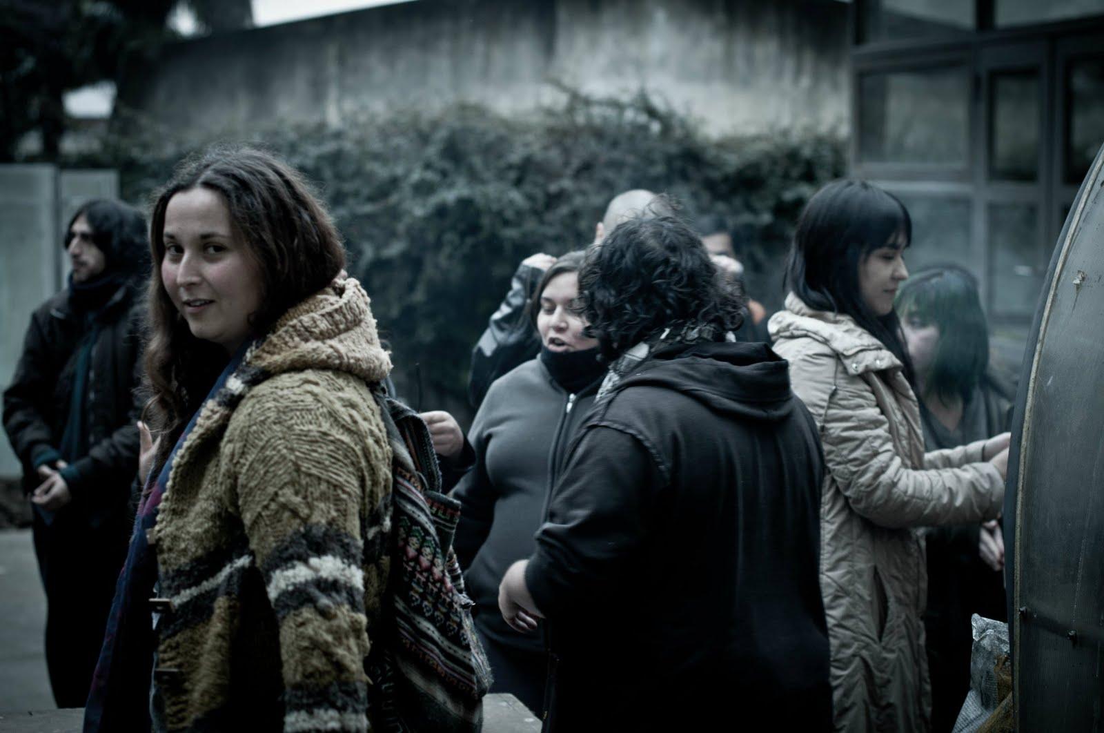 Temuco y el retorno de lo visual for Viveros en temuco