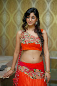 Shilpi Sharma Photos at Trisha Pre launch fashion Show-thumbnail-11