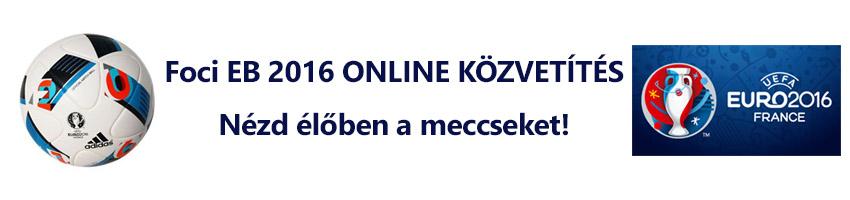 Foci EB 2016 ONLINE