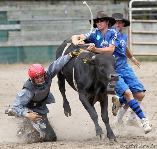 Lyric Tauariki got towed around the arena after his hand got stuck, in the NERCA youth steer ride event, at  the Upper Mohaka Rodeo at the Upper Mohaka Domain. photograph