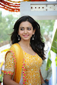 Rakul Preeth Singh at Pandaga Chesko Launch-thumbnail-11