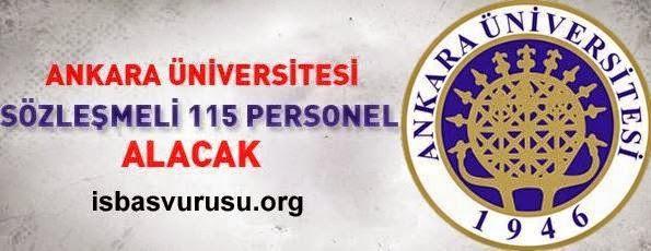üniversite iş ilanları