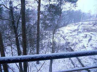 frettinäyttely ferret show Capital talvi ja lunta