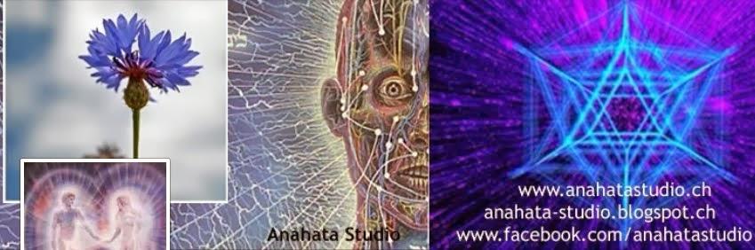 Der Energiekörper des Menschen und seine verschiedenen Energiesysteme auf Facebook