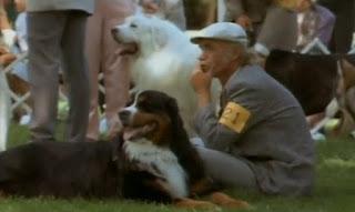 """Blog Safari Club, documental online """"La guía máxima de los perros"""""""