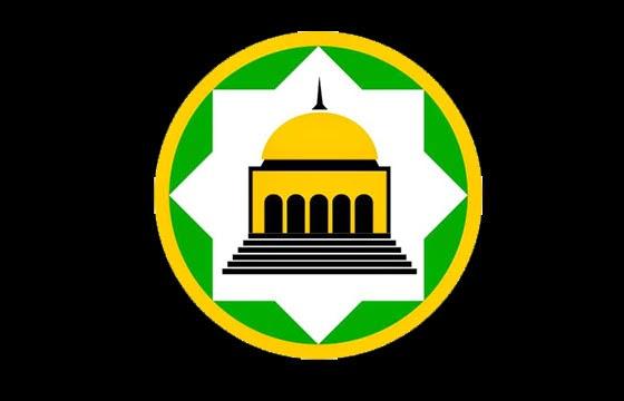 logo DMI