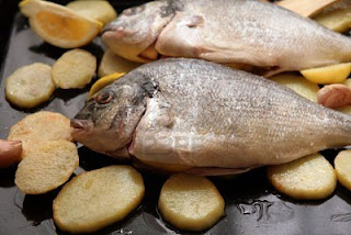 fish for fat reducing