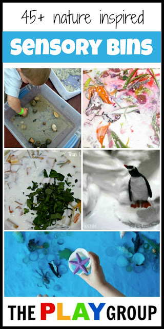 Sensory Bins Inspired by Nature