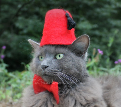 Dr Who Cat Fez With Bow