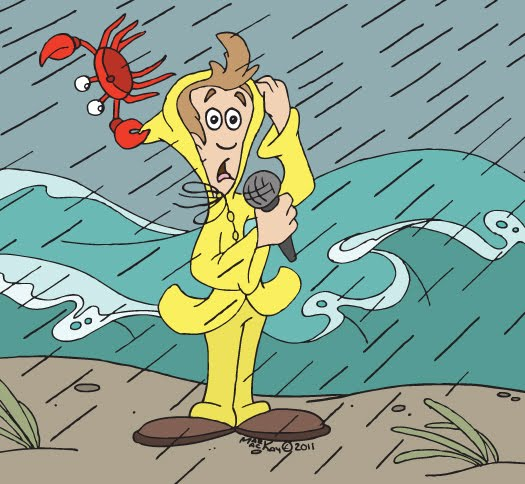 Image result for weather reporter cartoon