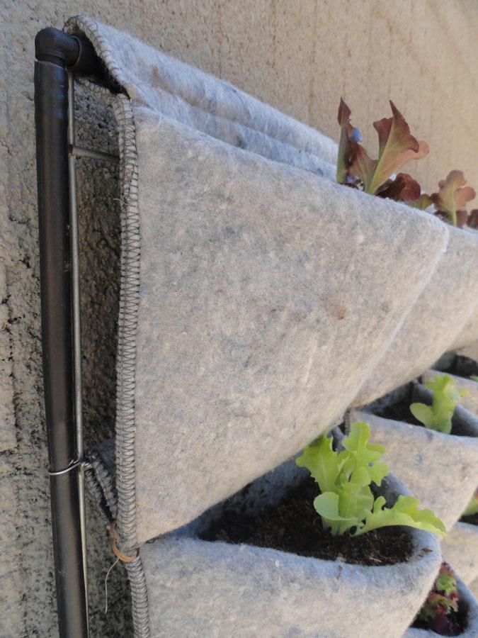 Vertiflor huerto urbano en casa for Riego jardin vertical