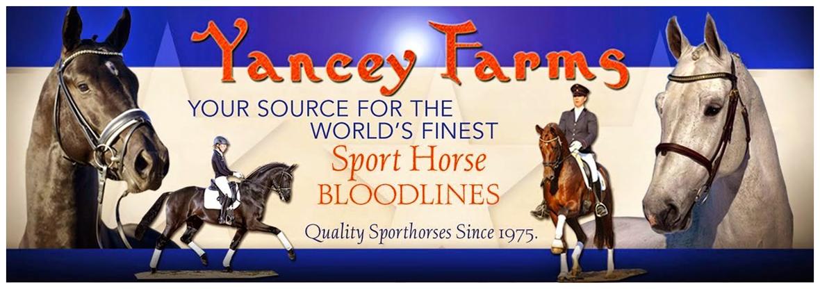 Sales Page for Foals from Yancey Farms Frozen Semen Program