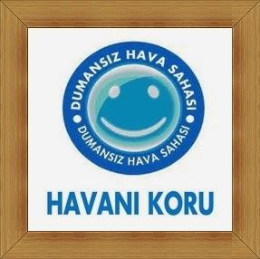 HAVANI KORU