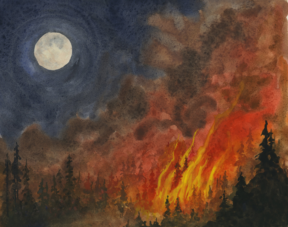 Elva's Field Notes: Fire!