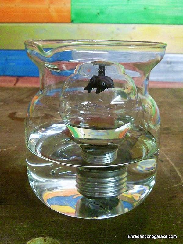Pez escapando de tiburón azul. Enredandonogaraxe.com