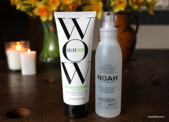one little vice beauty blog: essential everyday hair styling products