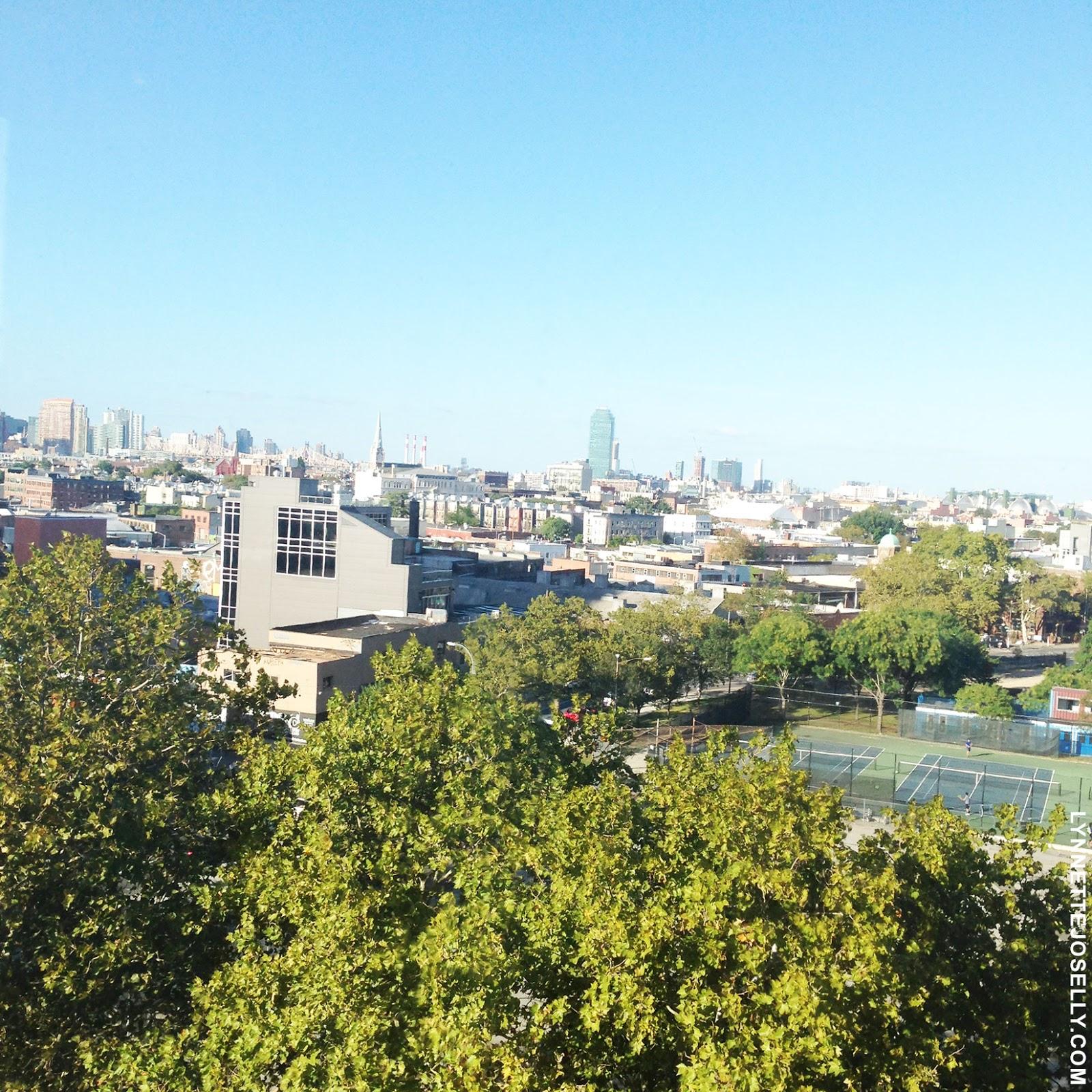 xanadu-mccarren-hotel-rooftop-brooklyn-newyork