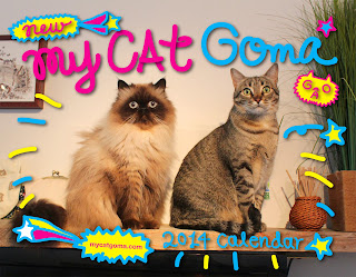 Goma 2014 calendar