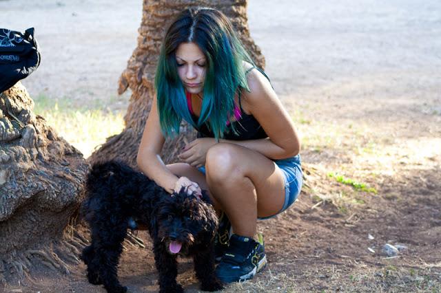 cane barboncino villa trabia non tutte le ciambelle vengono col buco