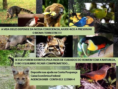 Ajude-nos a ajudar!!!