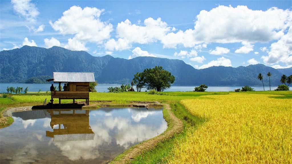Peranan Pertanian Dalam Ekonomi Pedesaan Pusat Ilmu Pertanian