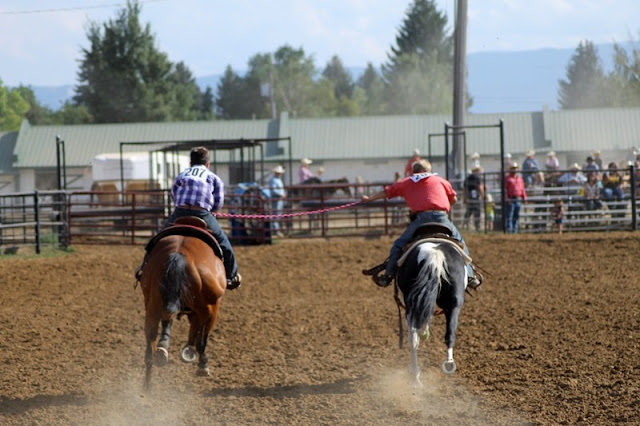 The home stretch - but don't stretch too far!  Sheridan Elk's Youth Rodeo