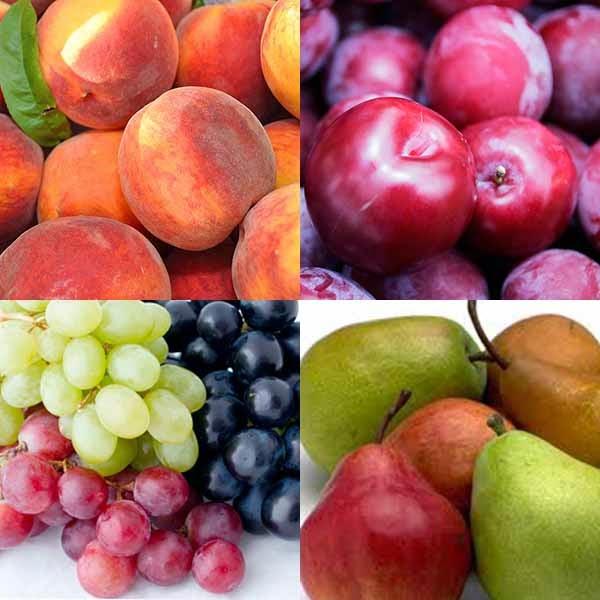 August fruit to Ukraine