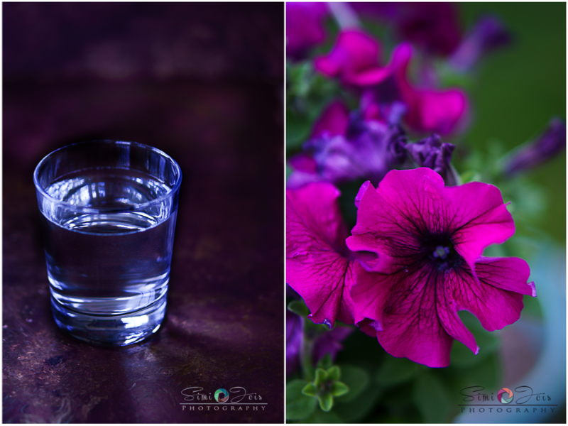 365 days of photography, Food Photography tips, Photography,