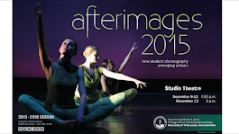 Afterimages 2015